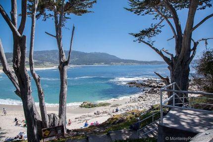 Neighborhood - Home Pura Vida, Carmel By The Sea